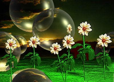 Imagen de flor retocada